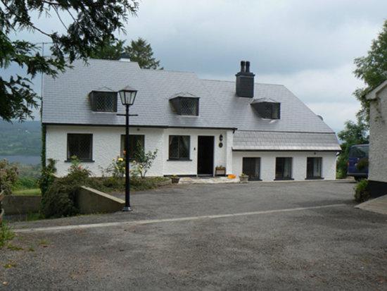 Rhu-Gorse: Rhu Gorse, Lough Eske, Donegal