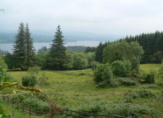 Rhu-Gorse: view of Lough Eske from Rhu Gorse
