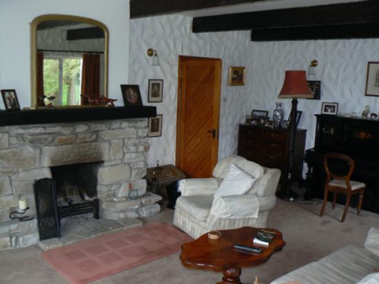 Rhu-Gorse: fireplace, livingroom, Rhu Gorse