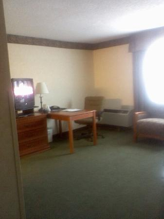 Holiday Inn Express Hotel & Suites Pittsburgh Airport: Living Room Area