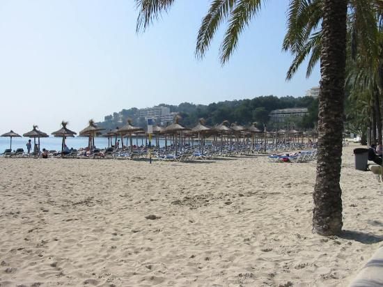 Santa Ponsa, Spanje: the beach