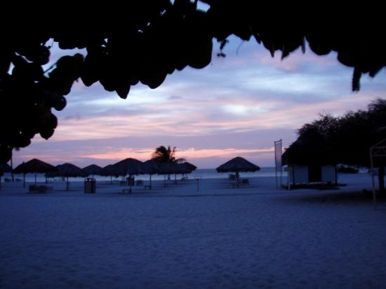 Bucuti & Tara Beach Resort Aruba: View from Ground Level