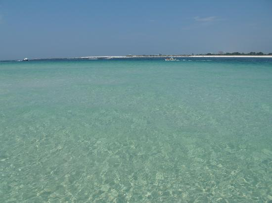 St. Andrews State Park: crystal clear water