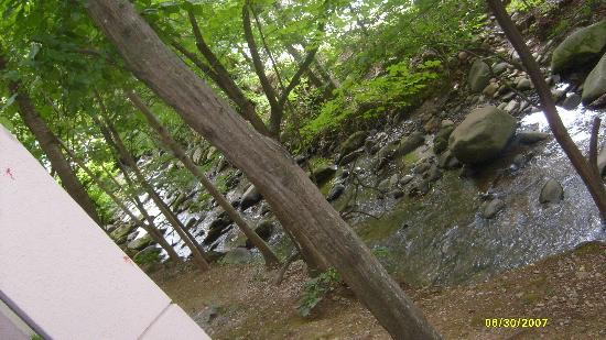 Hampton Inn Gatlinburg: Creek right behind room