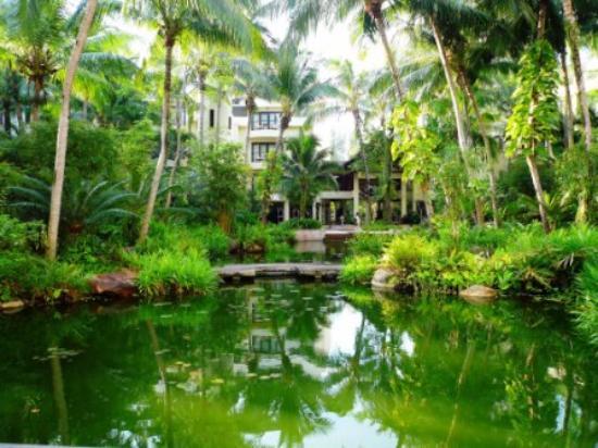 Tanjung Rhu Resort: Towards the reception area