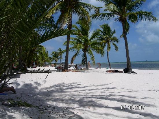 El Patio Motel Key West Florida By Smathers Beach Key West Picture Of El  Patio Motel ...