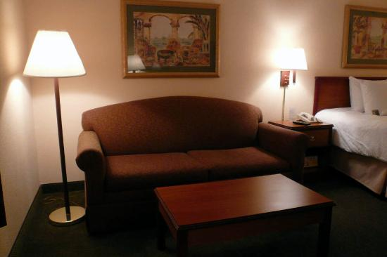 Hampton Inn Tampa-Veterans Expwy (Airport North): sofa