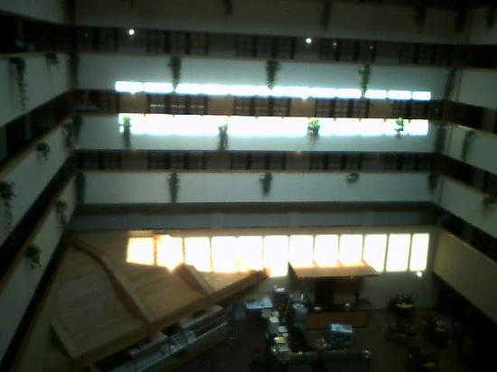 Embassy Suites by Hilton Oklahoma City Will Rogers Airport: Atrium from Above