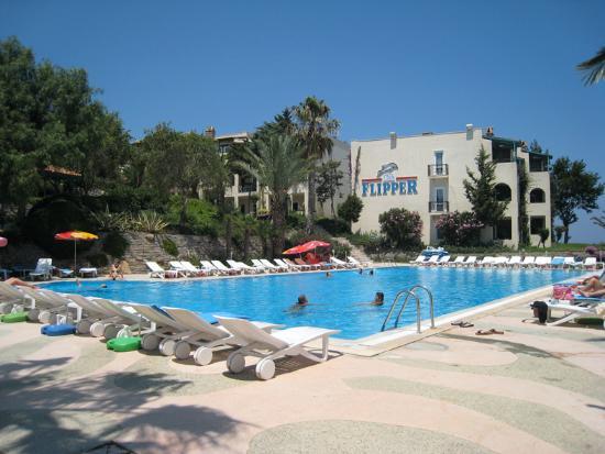 Club Flipper: swimming pool