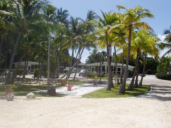 Kon-Tiki Resort: View of the resort from the water