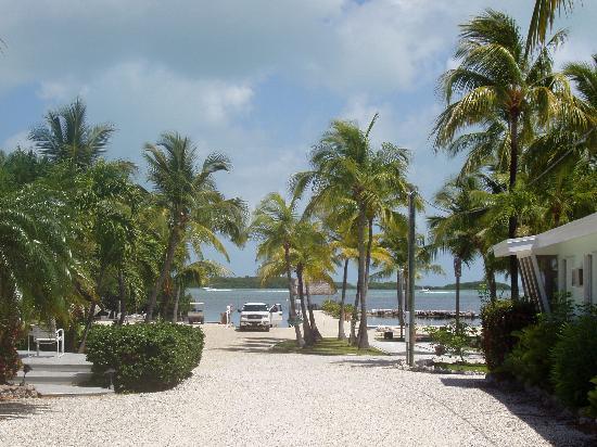 Kon-Tiki Resort: View of the boat ramp