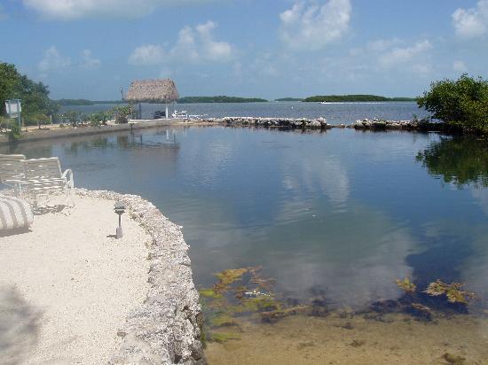 Kon-Tiki Resort: The lagoon