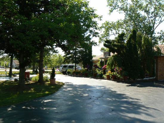 Chateau Motor Lodge: Main Driveway