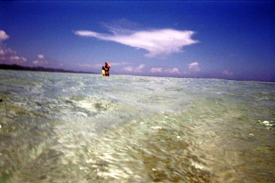 Paradise Island & The Mangroves (Cayo Arena): PI