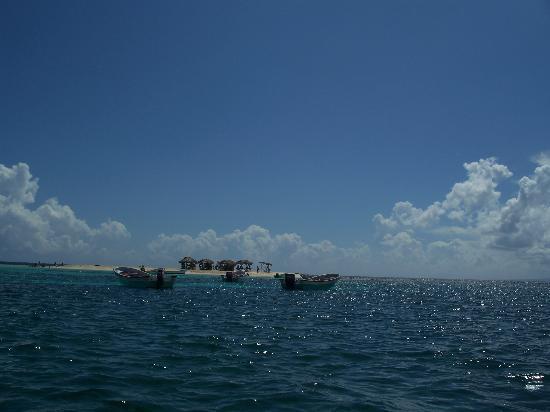 Paradise Island & The Mangroves (Cayo Arena) : PI