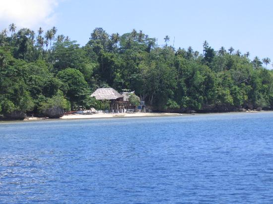 Bunaken Cha Cha Nature Resort: Cha cha resort from boat