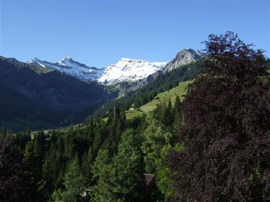 Waldhaus-Huldi: View from Balcony