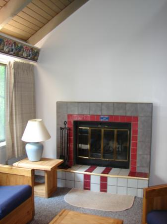 Eagle Village Resort: the fireplace