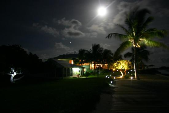 Cape Santa Maria Beach Resort & Villas: Beach house and palm tree at night