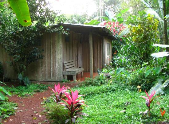 La Carolina Lodge : our cabin