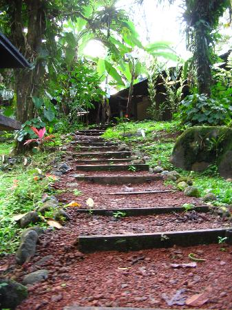 La Carolina Lodge : steps from hot tub to main house