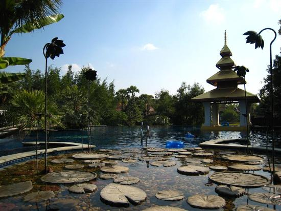 The Dhara Dhevi Chiang Mai: Public infinity pool.  The four standing flowers are another set of interesting shower heads.