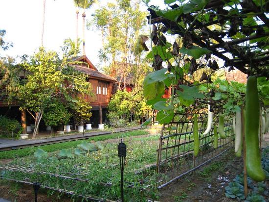 The Dhara Dhevi Chiang Mai: A villa amidst well manicured farm land.