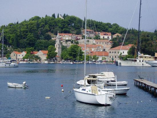 Hotel Orphee: cavat 10mins by boat from hotel