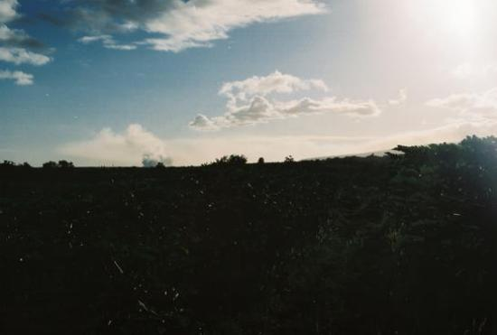 Kapoho Tide Pools: Steam plume from lava (just left of the center)