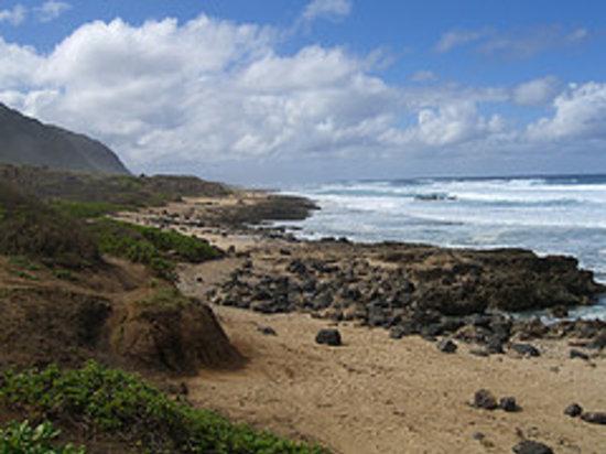 瓦胡岛照片