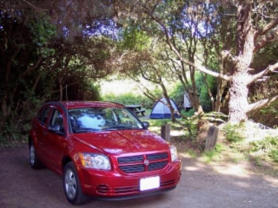 MacKerricher State Park : Camping was safe for this solo traveler.