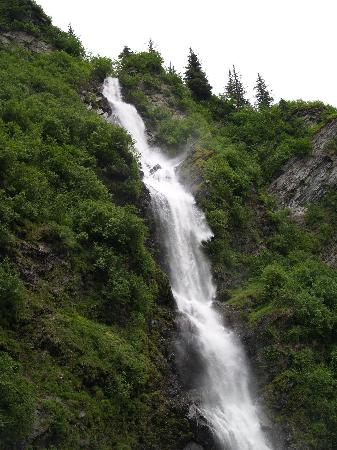 Wild Roses By The Sea B&B Retreat: Waterfalls everywhere
