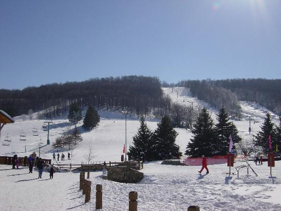 ‪‪Ellicottville‬, نيويورك: Holiday Valley‬