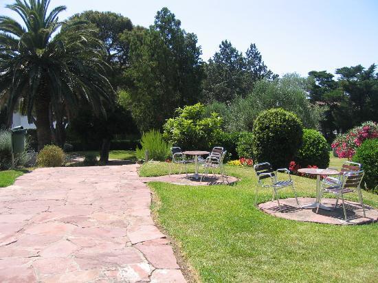 Hotel Alga: Gardens at Alga