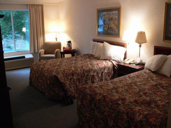 Comfort Inn Arlington Boulevard: Zimmer