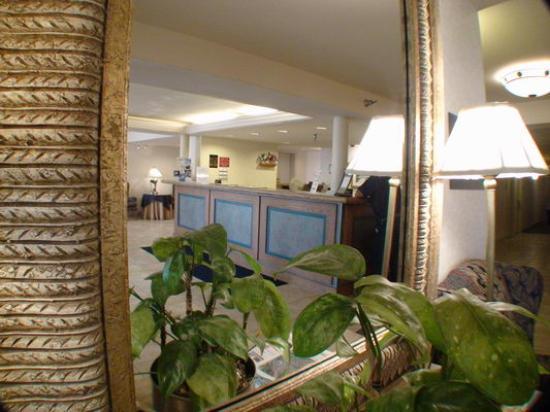 Comfort Inn Arlington Boulevard: Lobby