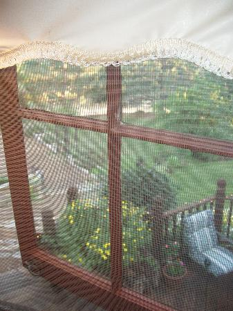 Poppy Hill Bed and Breakfast: view out window from sitting area