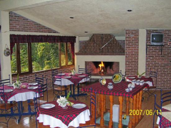 Suites en la Montana : Este es el restaurant en la mañana temprano siempre está prendida la chimenea y hay vista al...