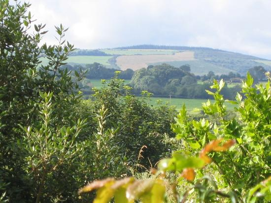 The Mustard Seed at Echo Lodge: View from garden
