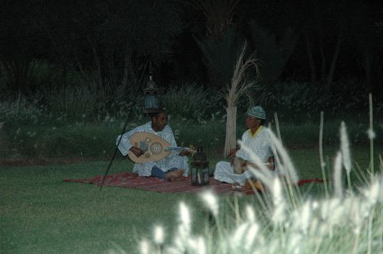 Skoura, Marruecos: Musicians serenading our first night