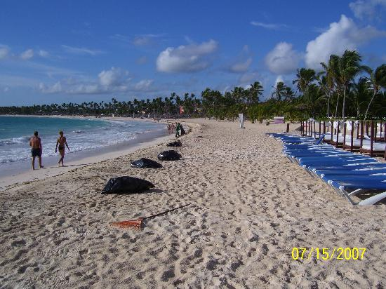 Punta Cana Princess All Suites Resort & Spa: More beautiful beach (to left)!