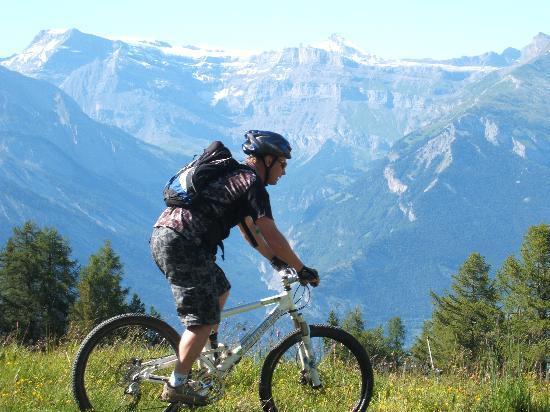 schweiziska Alperna, Schweiz: mountain biking above Sion