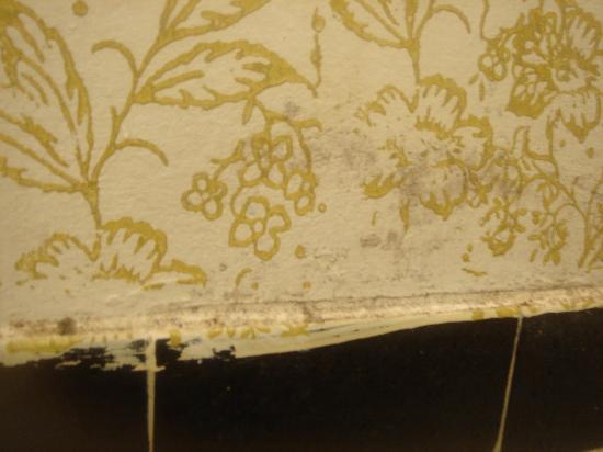Golden Thistle Hotel: bathroom needs painting