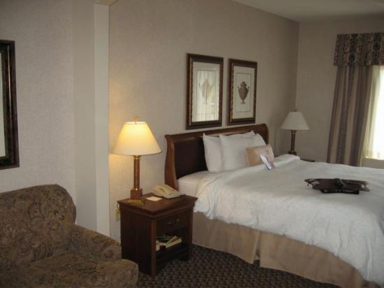 Hampton Inn Boston Bedford Burlington : King study