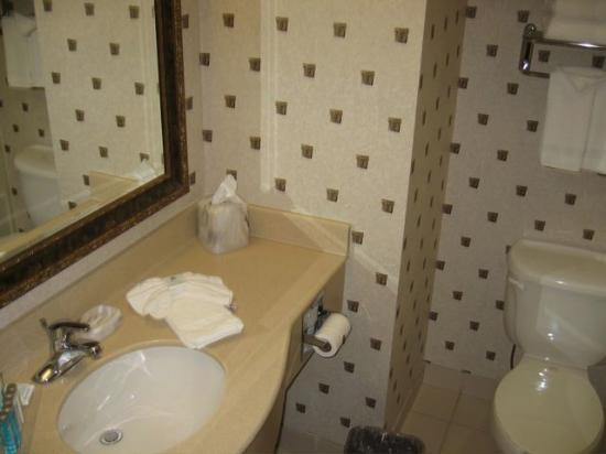 Hampton Inn Boston Bedford Burlington: Clean Bathroom