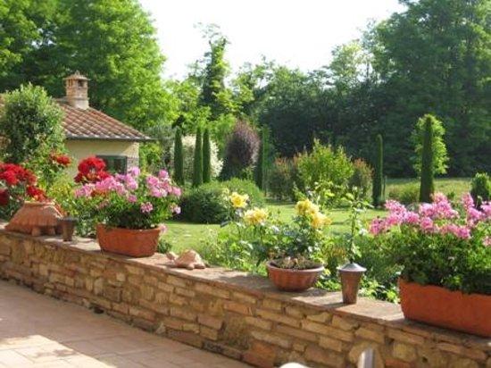 Molino di Foci: Garden