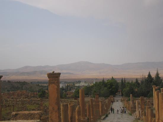 Timgad Picture