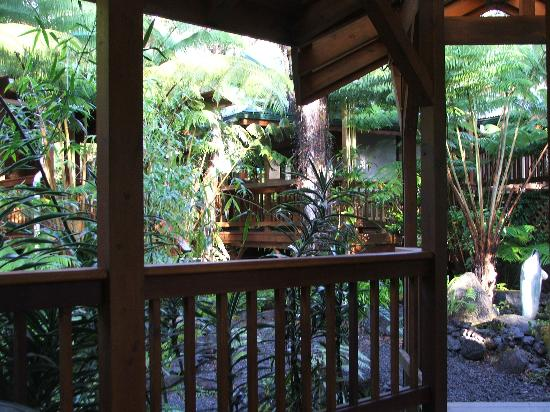 Volcano Village Lodge: The front porch-perfect for breakfast among Ohia trees.