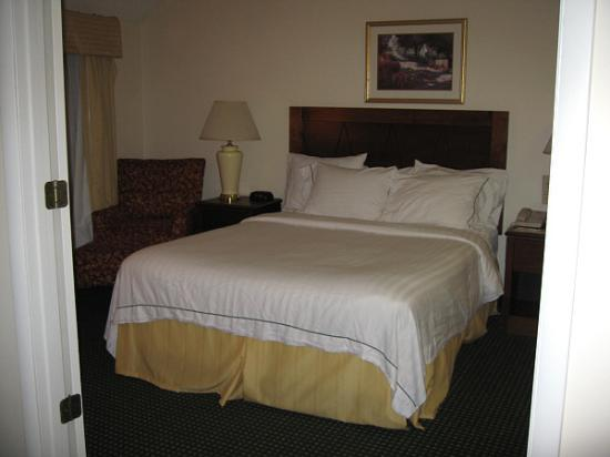 Residence Inn Buffalo Amherst: Lower bedroom view 2