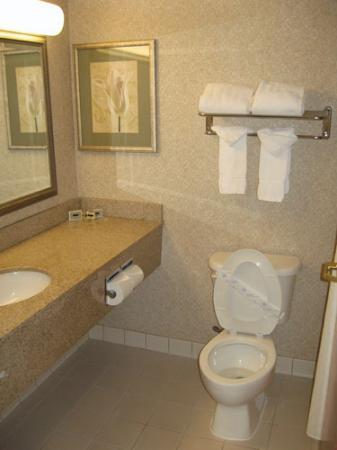 Wingate By Wyndham Charlotte Airport I-85 / I-485: Bathroom